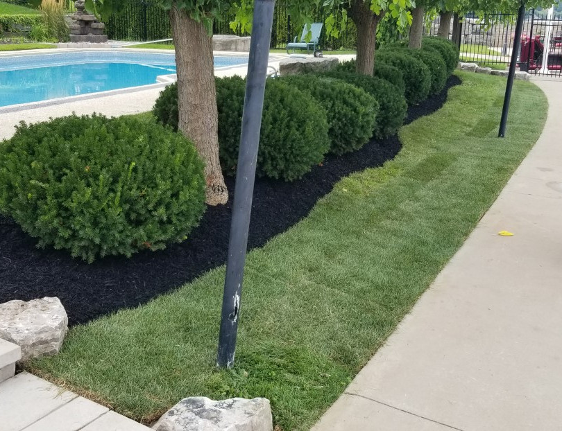 Completed with garden re-edged and mulch added