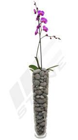 MC Stone lávové kameny - orchidej velká