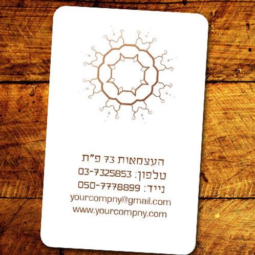 כרטיסי ביקור - Etnix