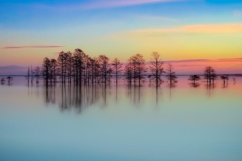 58003A - Lake Mattamuskeet - color.jpg