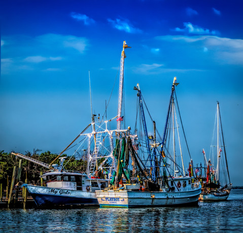58175A - Fleet of Shrimp Boats.jpg
