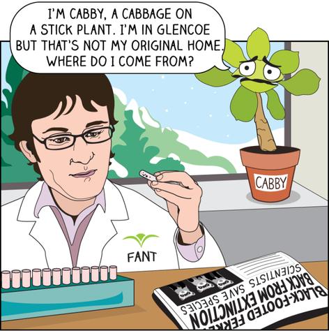 Chicago Botanic Garden - Plantcestry Comic