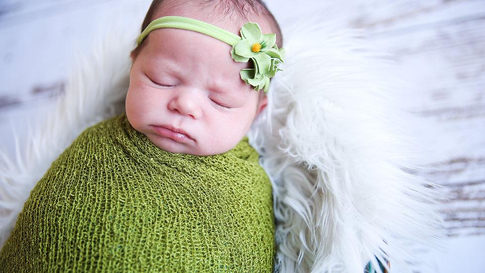 Newborn 25 Digitals with BBP Studios