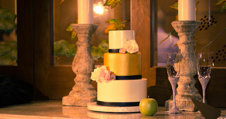 Nausheen-Xenophon-cake.jpg