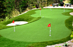 06-pro-putting-greens