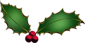 holly-vector-transparent-background-6.pn