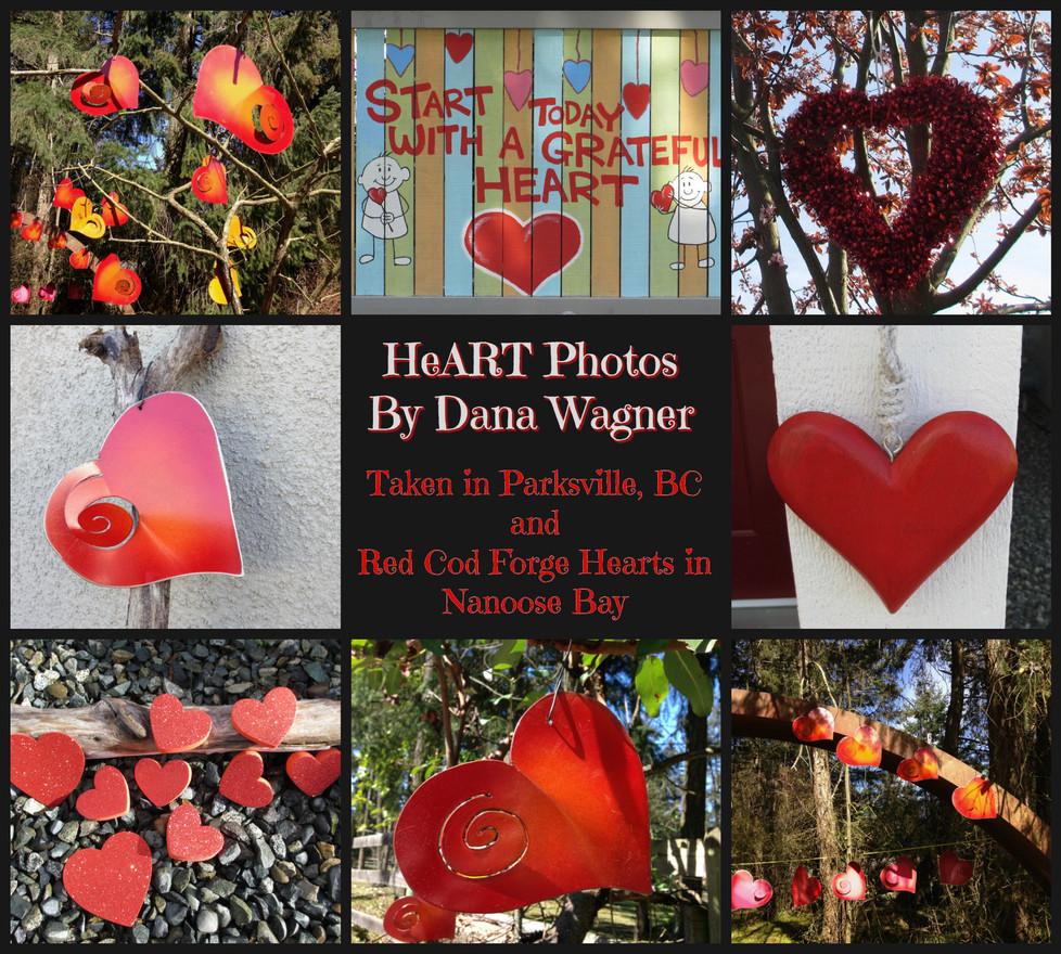 HeART Photos by Dana Wagner