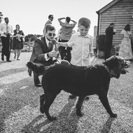 wedding_party_lr-77.jpg
