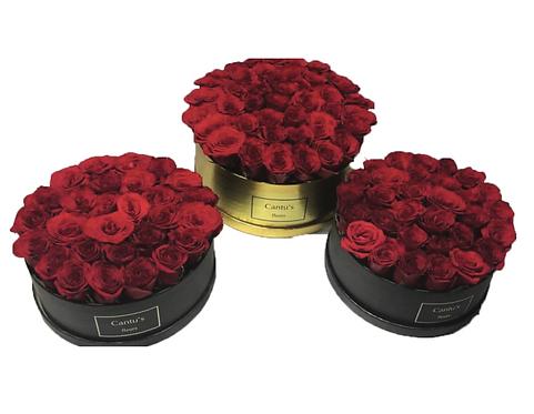 36-Rose Boxed Fleurs