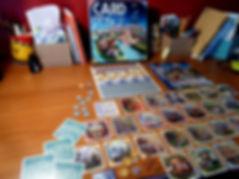 Card City XL Alban Viard Jeu de société Sarah PONCEBLANC Illustratrice graphisme Amiens Vue du jeu : boite cartes jetons