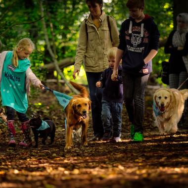 Golden dog and girl (1 of 1).jpg