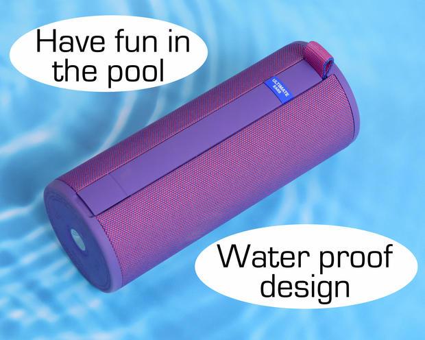 8x10speaker water2751 words.jpg