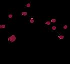 CCEF_logo.png