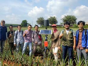 Pemantauan Iklim Mikro di Lahan Nanas, Lampung dengan AWS Mertani
