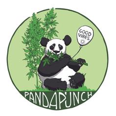 Panda Punch