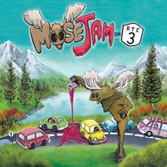 Moose Jam on Rte 3