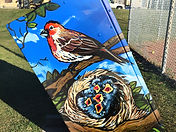 Utility Box art of boundless birds in Calgary crossroads community