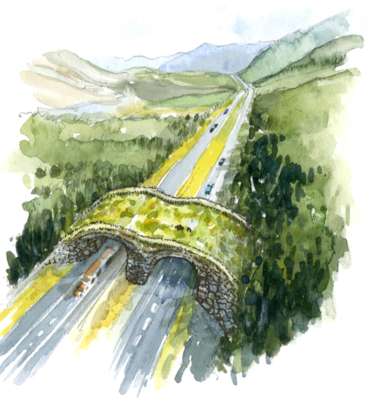 """""""Overpass"""""""