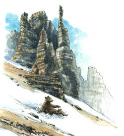 """""""Bear at Sentinel Pass"""""""