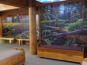 Rainforest mural detail by artist Doug Driediger for Kwisitis Visitor Centre, Pacific Rim National Park