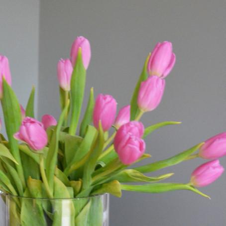 Tulip tips!