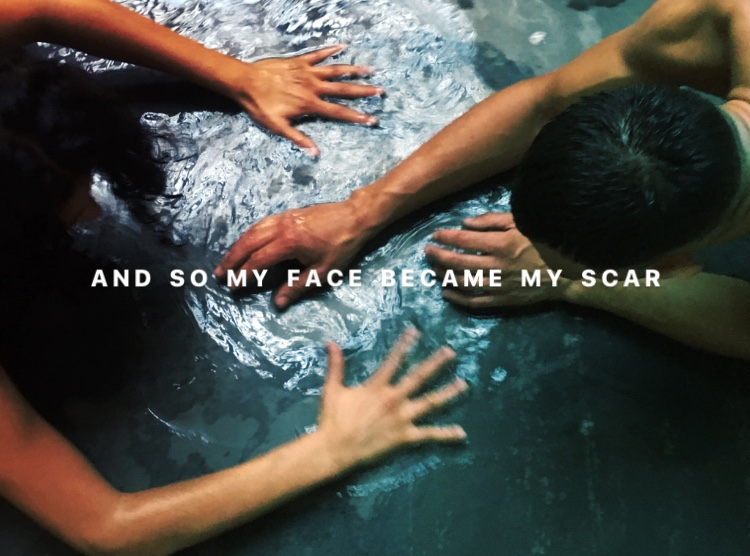 and so my face became my scar