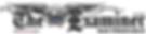 225px-Sfexaminer_logo.png