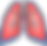 polmoni.png