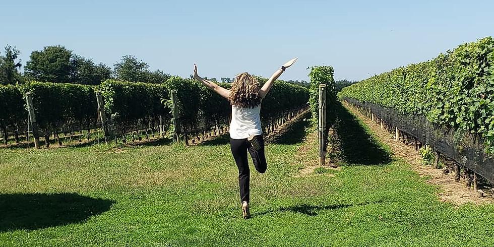 Hamptons Wine Tour
