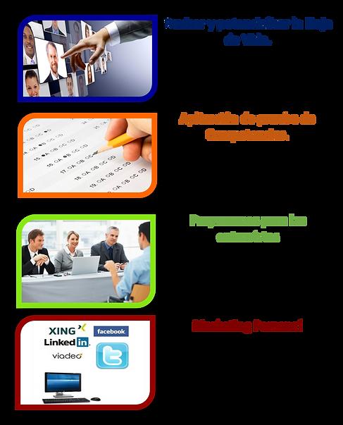 asesoría_en_empleo1.png