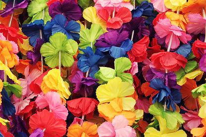 Hawaii flowers background.jpg