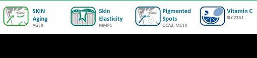 skin.png