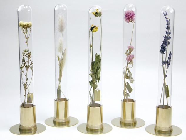 HERBARIUM BRASS GLASS DOME & FLOWER VASE