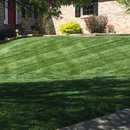 Green Lawncare Evansville.JPG