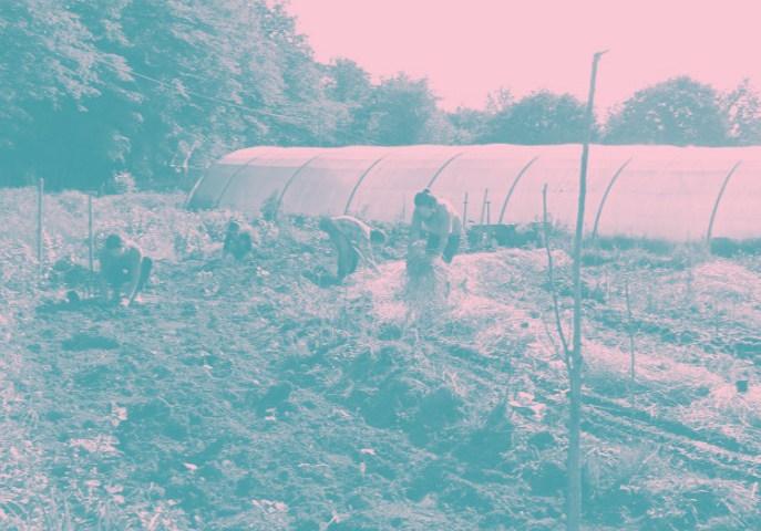 Groupe Jardin Ressource
