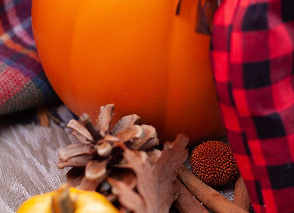 4 Serving Gift Bag Pumpkin Spice Lite