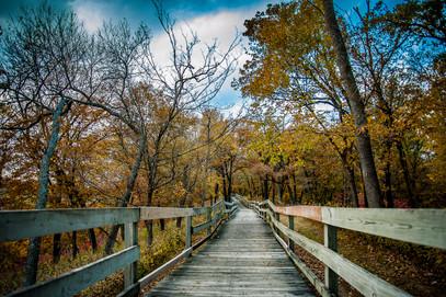 Hitchcock Boardwalk in Fall