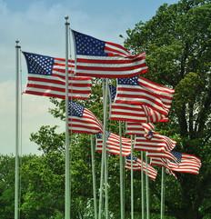 U.S Flags
