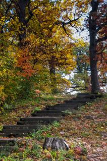 Fall Steps
