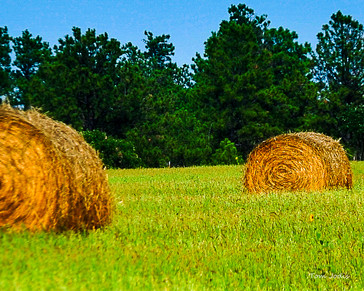 Nebraska Hay Bales