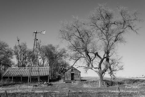 Abandoned_Farm in B&W