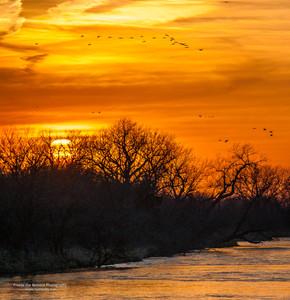 Sunset & Cranes
