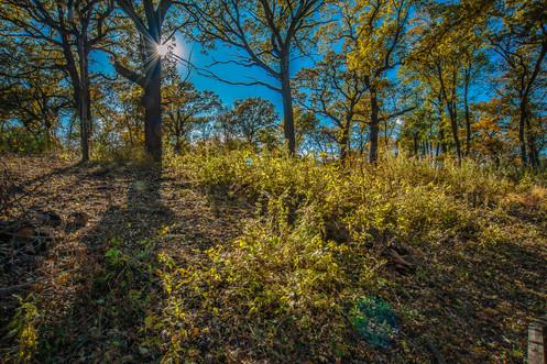 Starburst Hill