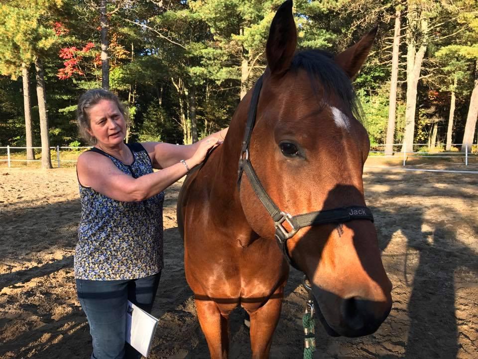 Energy Healing, large pet (Distant)