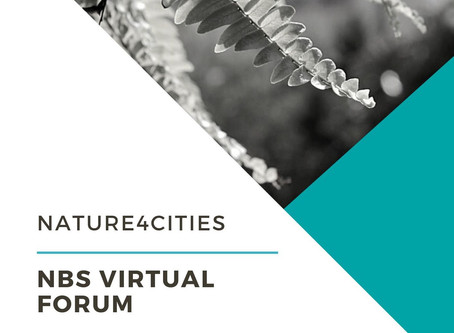 Feedback on NBS Virtual Forum: recover all videos and presentations