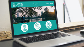 Nature4Cities platform: One-stop shop to better know and assess NBS