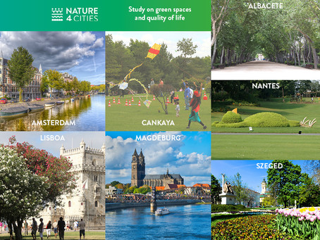Contribute to our study on green spaces and quality of life
