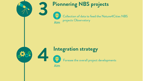 Nature4Cities: 1 year - 7 steps towards Greener Cities