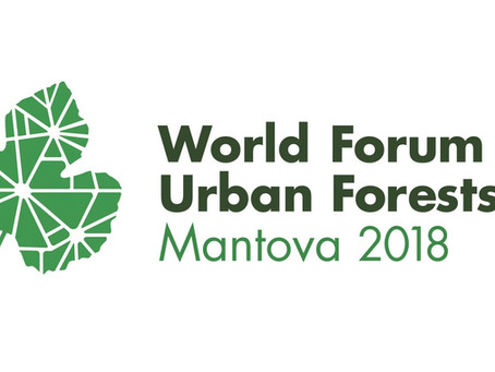 Nature Based Solutions will be featured during the upcoming World Forum on Urban Forests