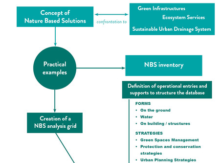 Nature4Cities built a multi-scalar and multi-thematic Nature Based Solutions typology